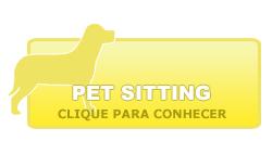 Conheça o serviço de Pet-sitting